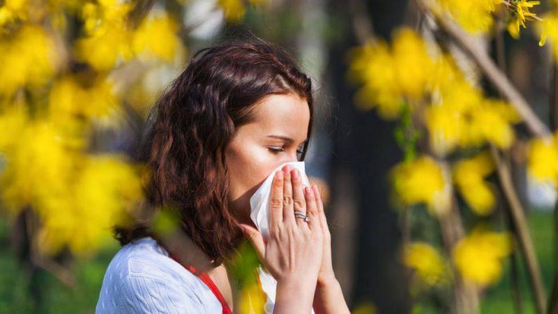 Purificador aire: alergia