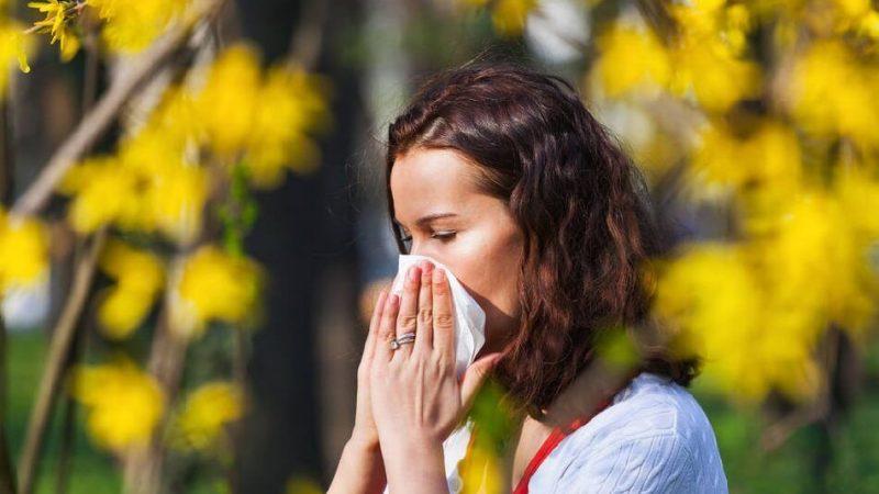 Libre de alérgenos y polvo