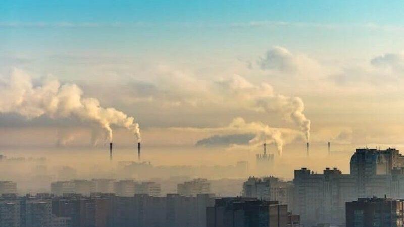 Son buenos los purificadores de aire? 7 Beneficios